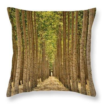 Poplars In Boardman Throw Pillow