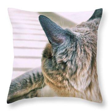 Porch Stretch  Throw Pillow