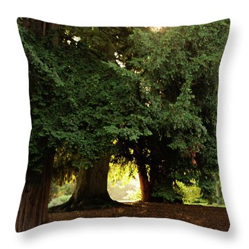 Throw Pillow featuring the photograph Portal To Another World by Scott Lyons