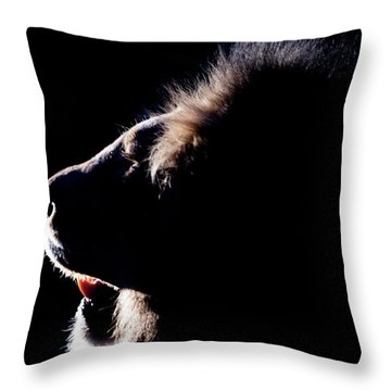 Portrait Of A Backlit Male African Lion Throw Pillow