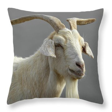 Mullwell Throw Pillows