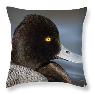 Portrait Of A Greater Scaup Throw Pillow