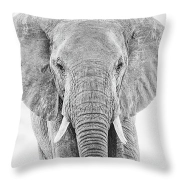 Portrait Of An African Elephant Bull In Monochrome Throw Pillow