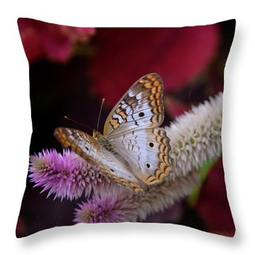 Throw Pillow featuring the photograph Posed Perfect by Michelle Wermuth