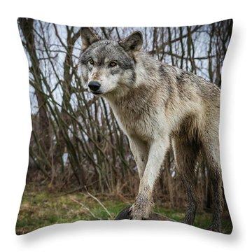 Posing Throw Pillow
