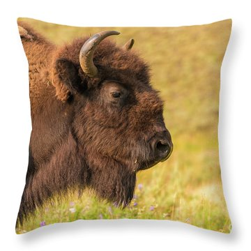 Throw Pillow featuring the photograph Power Head by Dheeraj Mutha