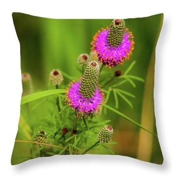 Prairie Clover Throw Pillow