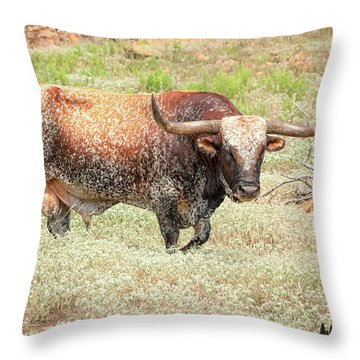 Prairie Longhorn Throw Pillow