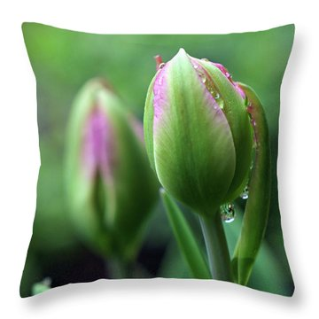Throw Pillow featuring the photograph Pray For Rain by Michelle Wermuth