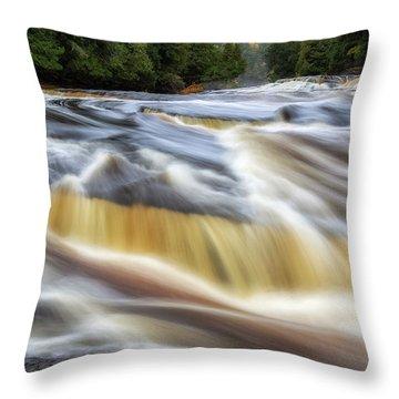 Presque Isle River 2 Throw Pillow