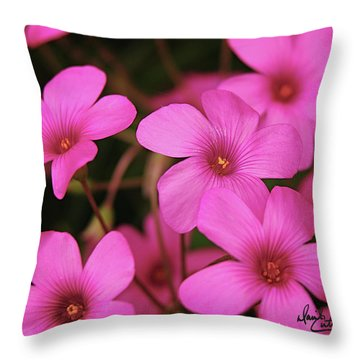 Pretty Pink Phlox Throw Pillow