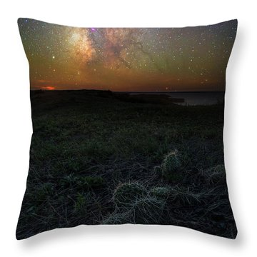 Throw Pillow featuring the photograph Pricked  by Aaron J Groen