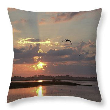 Throw Pillow featuring the photograph Prime Hook Sunrise 1 by Buddy Scott