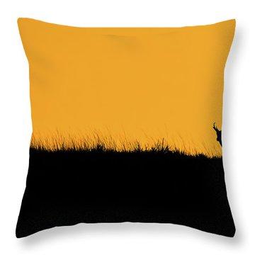 Pronghorn Ridgeline Sunset Throw Pillow