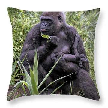 Proud Mama Silverback 6243 Throw Pillow