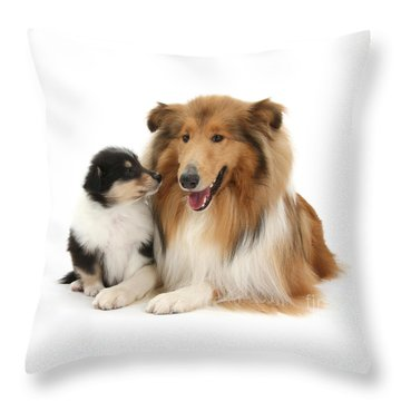 Throw Pillow featuring the photograph Proud Mother And Pup by Warren Photographic