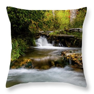 Throw Pillow featuring the photograph Provo Deer Creek Cascades by TL Mair