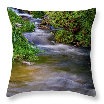 Throw Pillow featuring the photograph Provo Deer Creek by TL Mair