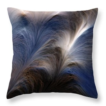 Psalms 27 14. Wait On The Lord Throw Pillow