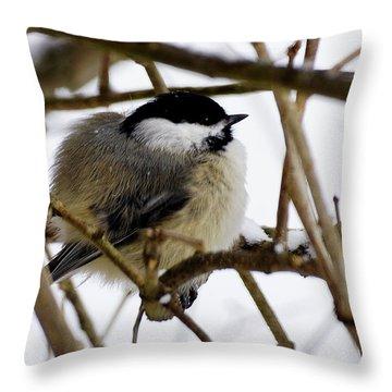 Puffed Up Throw Pillow