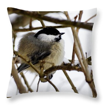 Puffed Up Throw Pillow