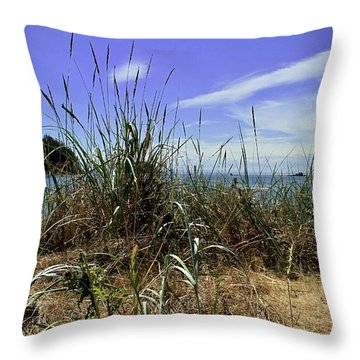 Puget Sound Deception Pass Throw Pillow