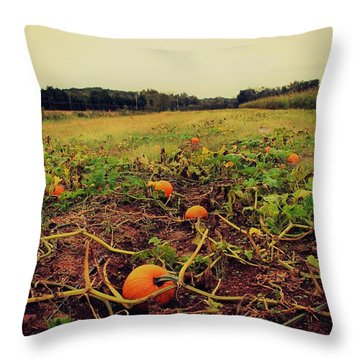 Throw Pillow featuring the photograph Pumpkin Picking by Candice Trimble