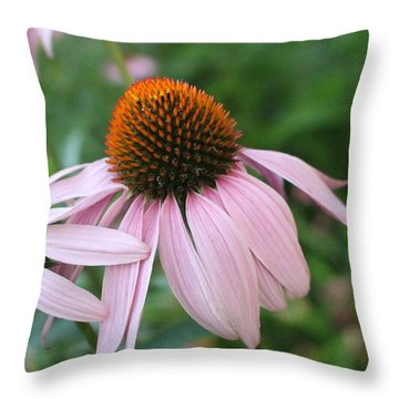 Purple Coneflower Pair Throw Pillow