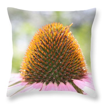 Purple Coneflower Seeds Throw Pillow