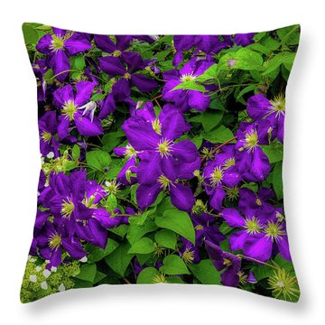 Throw Pillow featuring the photograph Purple Flowers by Lora J Wilson