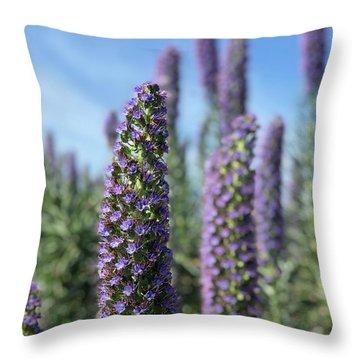 Purple Hyssop  Throw Pillow