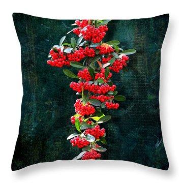 Pyracantha Berries - Do Not Eat Throw Pillow