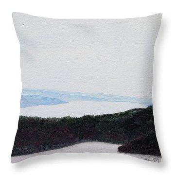 Quabbin Looking North Throw Pillow
