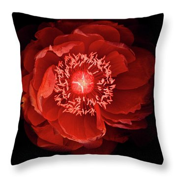 Queen Of The Night Number Four Throw Pillow