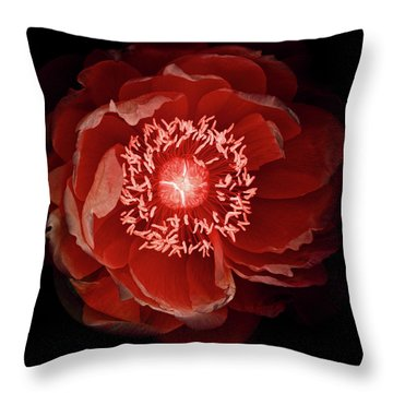 Queen Of The Night Number Three Throw Pillow