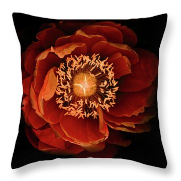 Queen Of The Night Number Two Throw Pillow