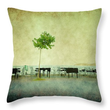 Throw Pillow featuring the photograph Quiet Evening by Milena Ilieva