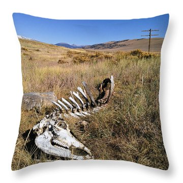 Throw Pillow featuring the photograph Quietus by Carl Young