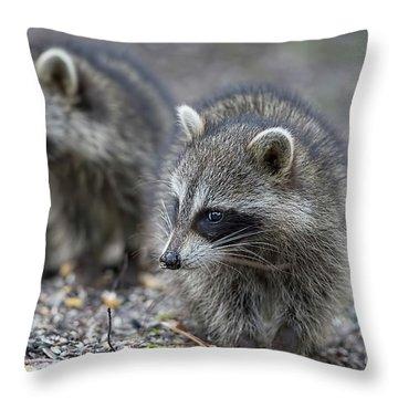 Raccoon Siblings Throw Pillow