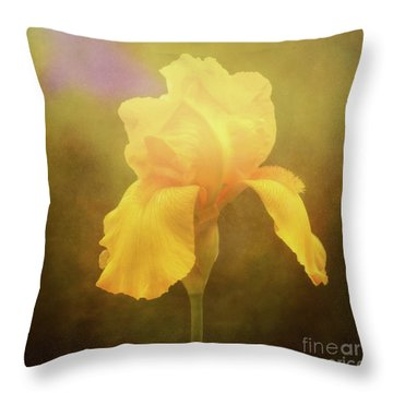 Radiant Yellow Iris With A Vintage Touch Throw Pillow