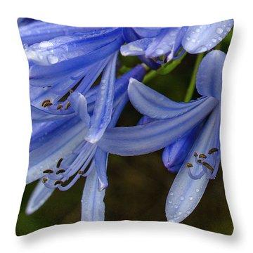 Rain Drops On Blue Flower Throw Pillow