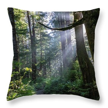 Throw Pillow featuring the photograph Rain Forest At La Push by Ed Clark