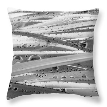 Rain On Siberian Iris Throw Pillow