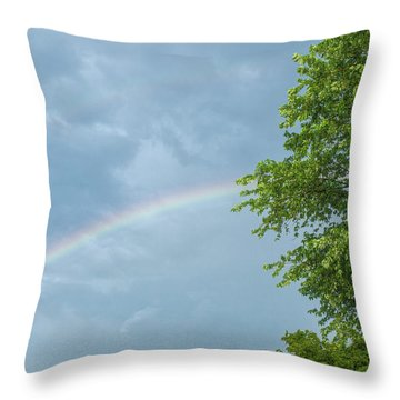 Rainbow And A Tree Throw Pillow