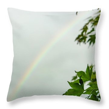 Rainbow With Leaves In Foreground Throw Pillow
