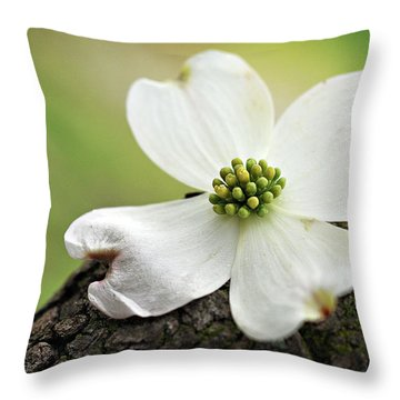Throw Pillow featuring the photograph Raining Sunshine by Michelle Wermuth