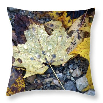 Throw Pillow featuring the photograph Rainy Autumn Day by Mike Murdock