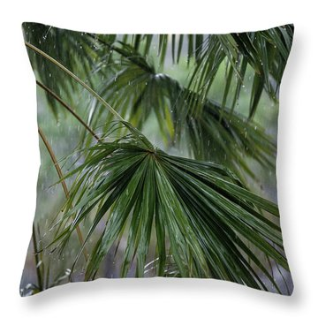 Throw Pillow featuring the photograph Rainy Day by Awais Yaqub