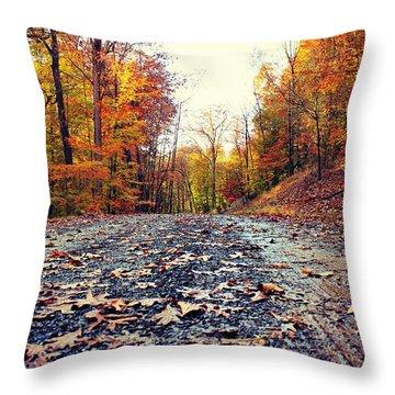 Rainy Fall Roads Throw Pillow