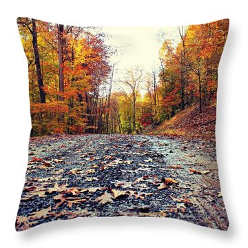 Throw Pillow featuring the photograph Rainy Fall Roads by Candice Trimble